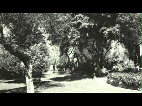Rockhaven: A Sanctuary from Glendale's Past