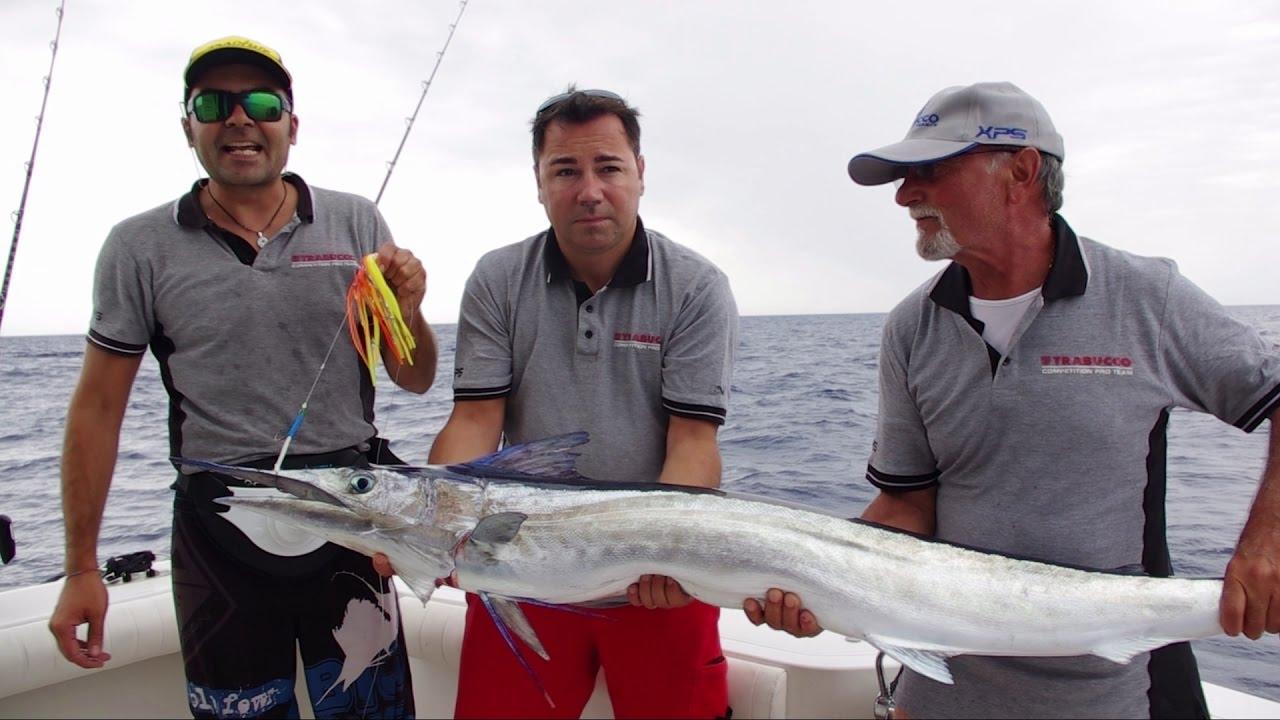 video pesca traina