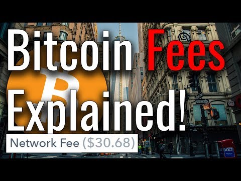 Why Are Bitcoin Fees So High? Bitcoin Fees Explained