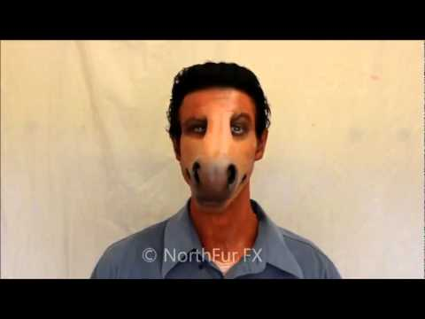 curiosa mascara caballo - YouTube