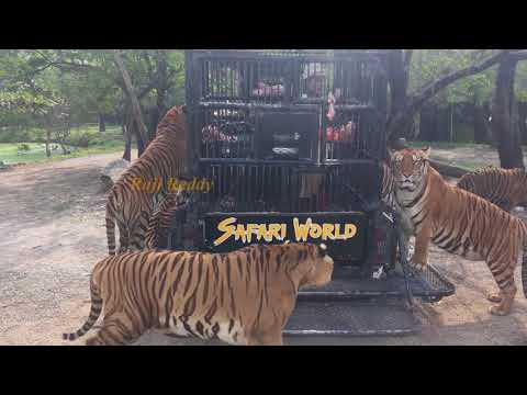 Safari World and Marine park  Full day tour  Bangkok 2018 ||