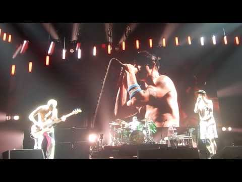 RHCP Live Torino #5 By the way - Goodbye Angels - Give it away