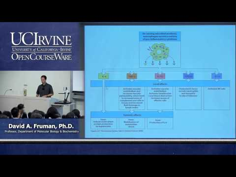 Biological Sciences M121. Immunology with Hematology. Lecture 03. Innate Immunity.