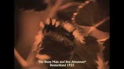 """""""Die Biene Maja und ihre Abenteuer"""" - Stummfilm auf DVD"""