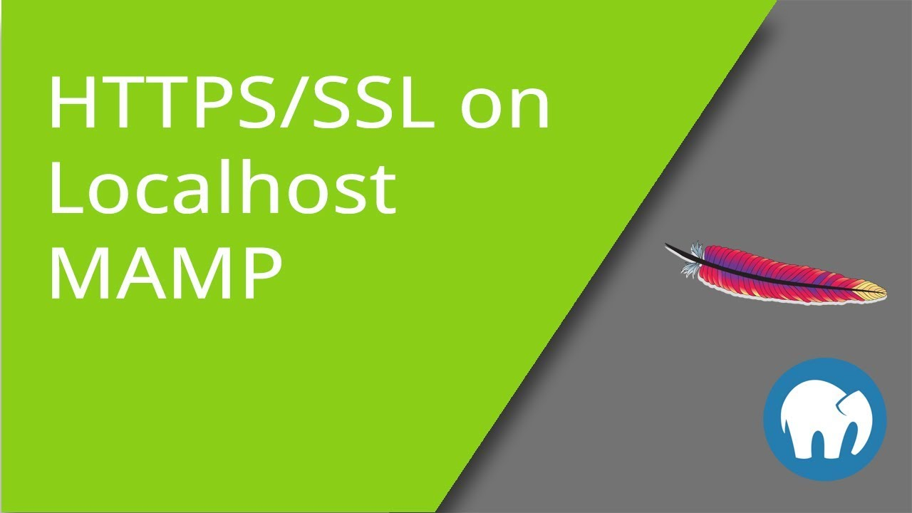 Free Https Ssl Support For Mamp Over Localhost Youtube