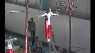 Мастер спорта по Спортивной гимнастике (муж)