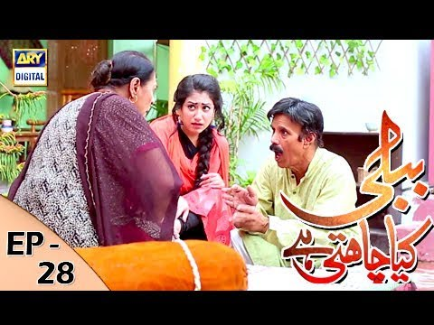 Bubbly Kya Chahti Hai - Episode 28 - 14th December 2017 - ARY Digital Drama