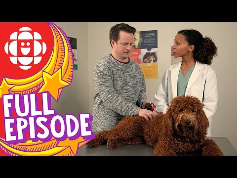 According To Kids | I Want to Be a Vet | CBC Kids