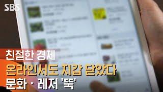 온라인서도 지갑 닫았다…문화 · 레저 '뚝' / SBS…