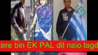 Tera Dilbar Tera Sathi Le Ayega Dholi Barati.wmv