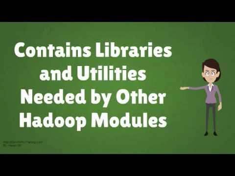 What is Apache Hadoop?