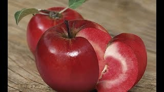 Types Of Fruit You NEVER Knew Existed