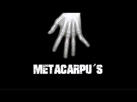 Metacarpu