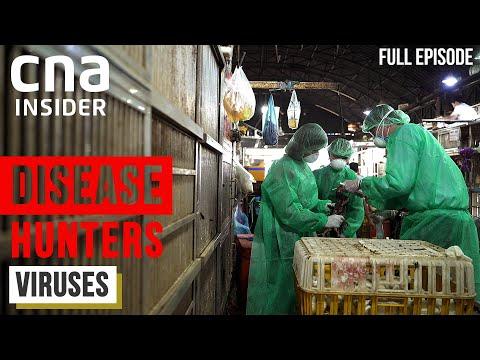 Meet The Virus Hunters: Before The Next Pandemic Strikes | Disease Hunters | Part 1/3