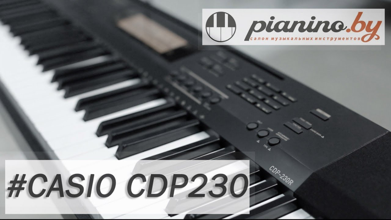 Image Result For Casio Pianino