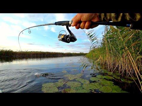 ЩУКИ СОШЛИ С УМА ОТ ЭТОЙ ПРИМАНКИ!!! Рыбалка на спиннинг осенью!