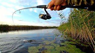 видео: ЩУКИ СОШЛИ С УМА ОТ ЭТОЙ ПРИМАНКИ!!! Рыбалка на спиннинг осенью!