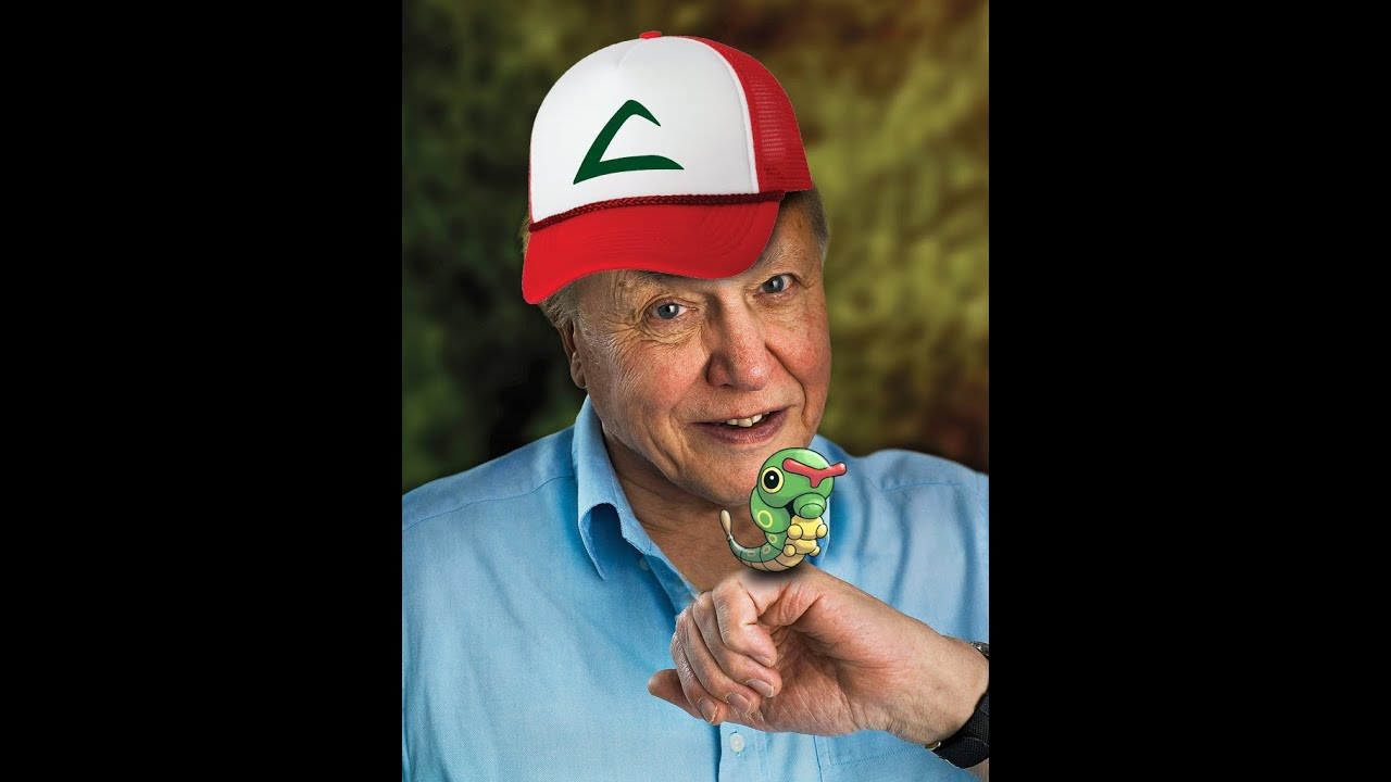 Pokemon Go explained by Sir David Attenborough - YouTube