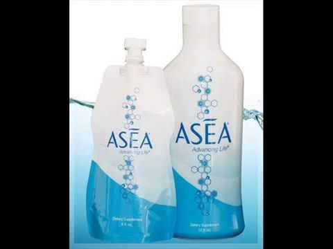 Asea-The Renal System