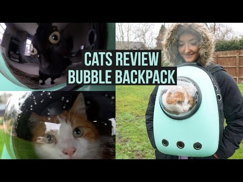 CATS REVIEW BUBBLE BACKPACK!