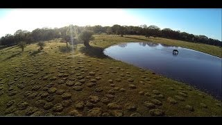 The New Forest - Aerial Video