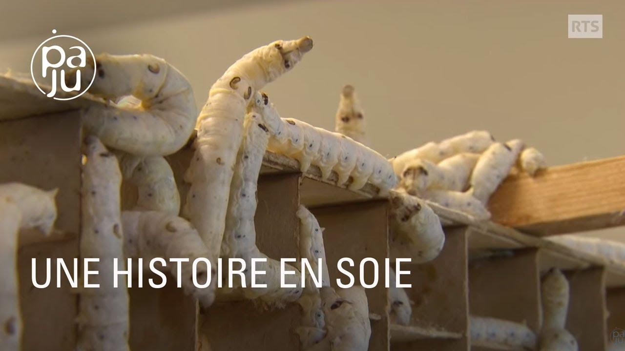 une histoire en soie ou le retour de la production de vers soie en suisse youtube. Black Bedroom Furniture Sets. Home Design Ideas