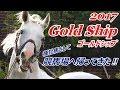 【2017】ゴールドシップ(Gold Ship) 種牡馬になっても変わらない魅力【札幌競馬場】