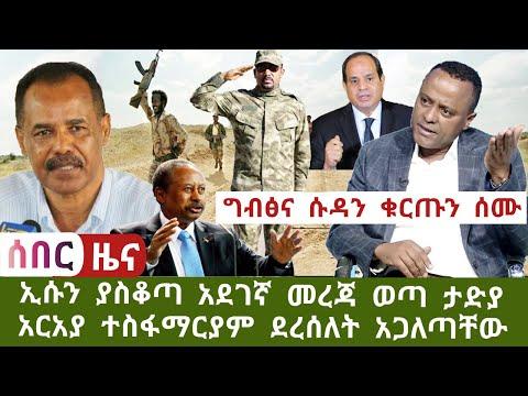 Ethiopia- አስደሳች ለግብፅና ሱዳን ቁርጡን ሰሙት ኤርትራን ያስቆጣው መረጃ ግን አርአያ እውነታውን አጋለጠ