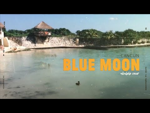 Blue Moon - Ukulele Cover in Cancun