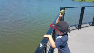 Learning to fish with daddy