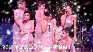The Coconut Cups / Romantic Memories ~女神たちのサミット~ 20th Anniversary DVD ザ・ココナッツ・カップス