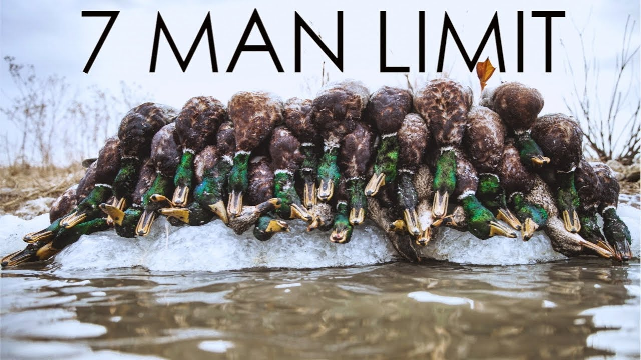 Epic Frozen Pond Duck Hunting 2018 Youtube