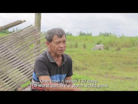 Philippines' Crop Insurance Helps Farmers When Typhoon Strikes