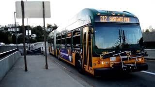 King County Metro/Sound Transit: Rainier Freeway Station [ 111, 114, 212, 214, 216, 219, 550, 554 ]