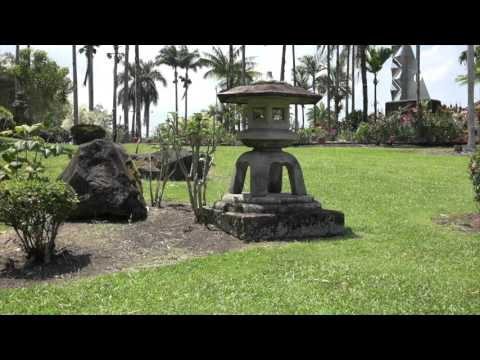 Big Island Treasures