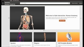 Gale Interactive: Human Anatomy Improves Student Spatial Reasoning thumbnail