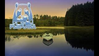 Русская рыбалка 4 стрим Челендж от подписчика Трофей карп зеркальный Оз Медвежье