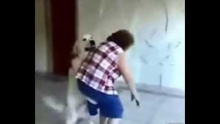 Fickt hund oma mit Der leckende