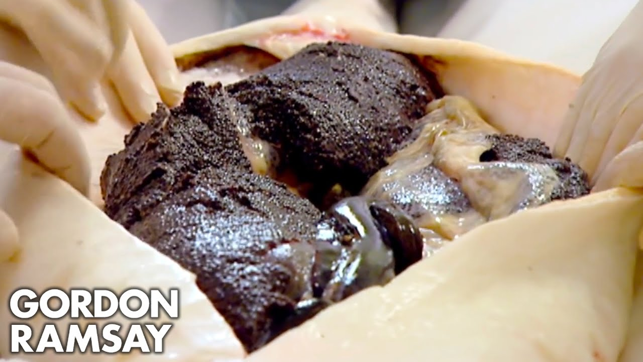 Download Gordon Ramsay Is Stunned by Farmed Caviar; Makes Lobster & Caviar Salad