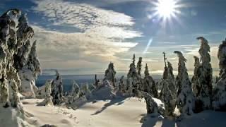 ✔ Красивая зима со снегом. Красивое видео для медитации и релаксации. Музыка для души