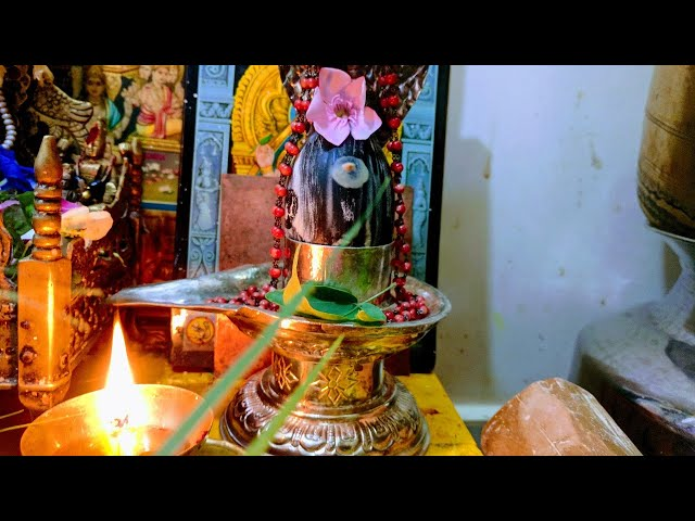 Somavara Rudra Ahishekam