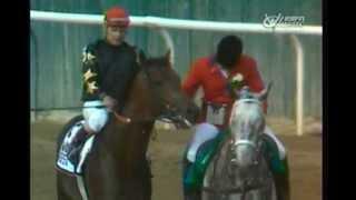 1988 Belmont Stakes - Risen Star thumbnail