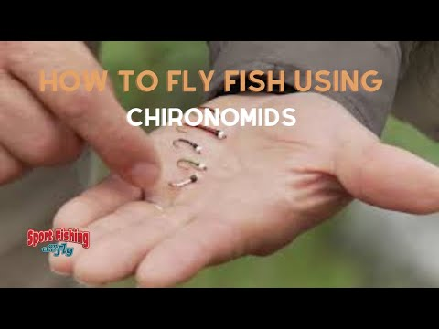 How To Fly Fish Using Chironomids Successfully