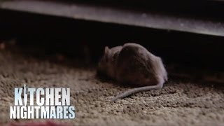 Gordon Accused Of Planting Dead Mouse at Restaurant Door - Kitchen Nightmares