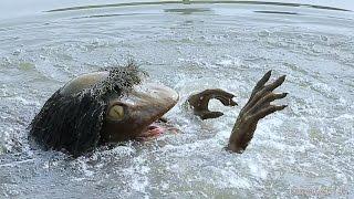 Specter of Japan, emerging from the kappa pond 兵庫県福崎町に住むカッパ thumbnail
