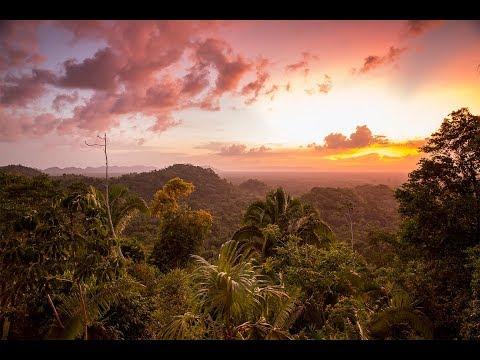 Copal Tree Lodge, a Luxury Jungle Eco-Lodge