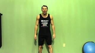 Wall Sit + Dumbbell Twist - HASfit Compound Exercises - Total Body Exercise