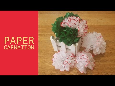 Easy DIY Paper Carnation