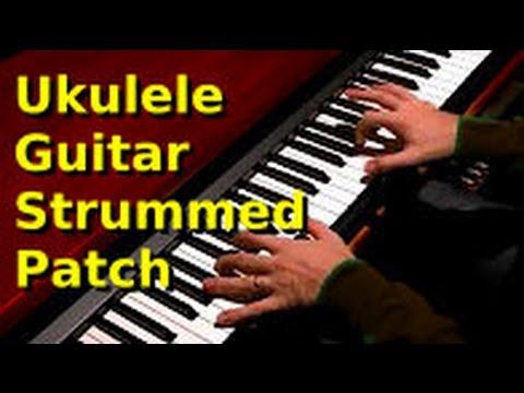 Pettinhouse ukulele guitar Strummed Patch
