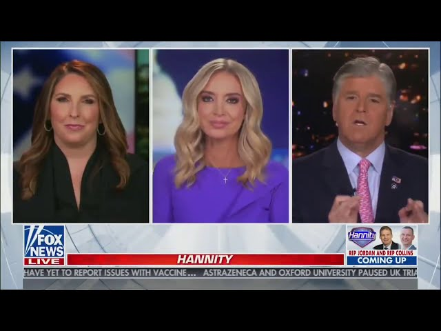 MUST WATCH: Kayleigh McEnany runs through voting allegations in 234 pages of affidavits
